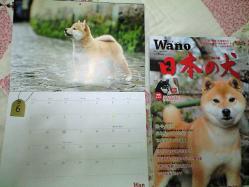 wan_dec2010_1.jpg