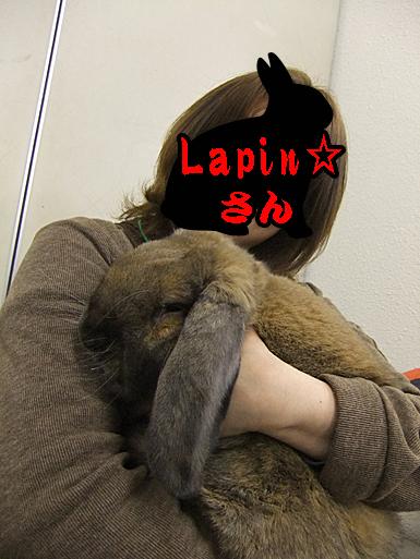 lapin☆さんに抱っこ2