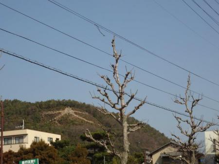 2_20120322234008.jpg