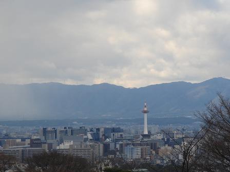 ごんちゃん 02525
