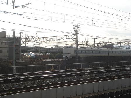 ごんちゃん 01313