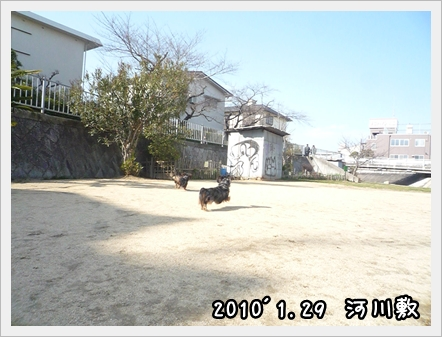 20100129 006