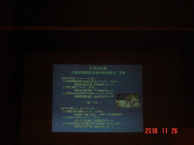 DSC01176_20101126214556.jpg