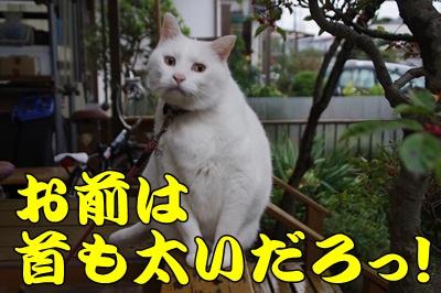 1.那須ラスト26