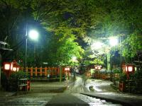 円山公園夜景