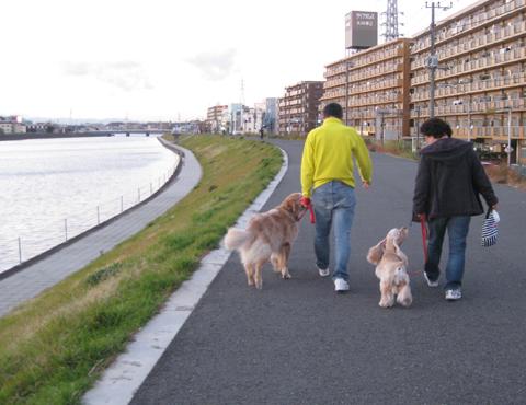 IMG_2444さくさく散歩