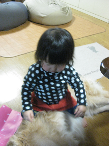 IMG_9127花