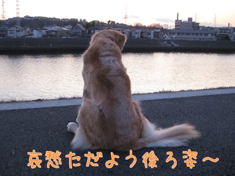 F4vdkkV0.jpg