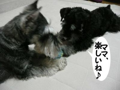 アコちゃん2月9日2