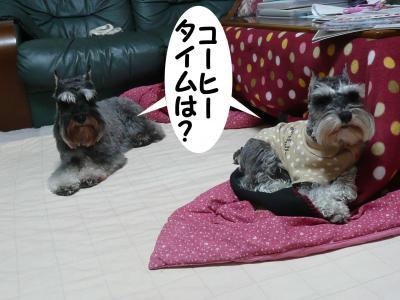 GO君ダイアン3月6日2