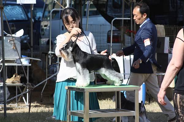 ことねチャン高松ショー9月29日-s