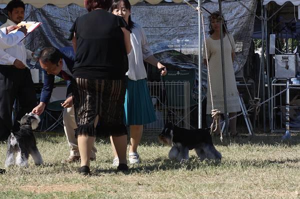 ことねチャン高松ショー9月29日3-s