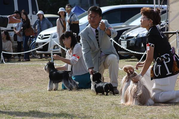 ことねチャン高松ショー9月29日6-s