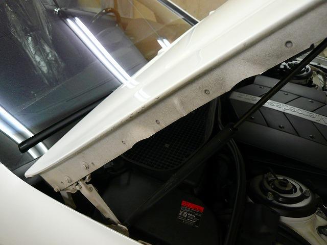 P1250746-474.jpg