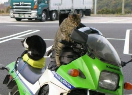 ちょっくらバイクで行ってくるか