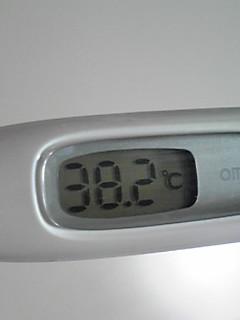 20100120011017