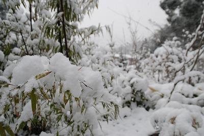 雪の連歌屋1