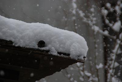雪の連歌屋2