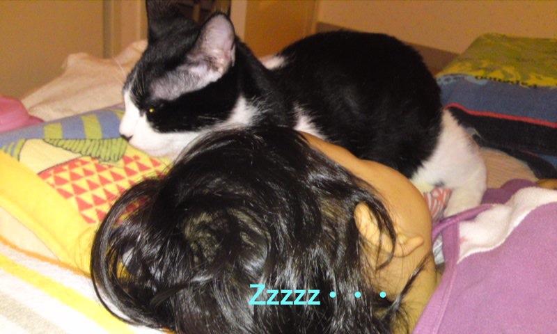 娘と寝るコタロウ。