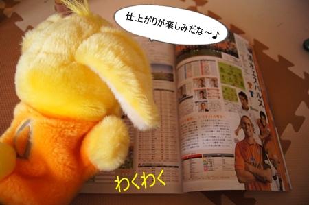 DSC09842_20130223121703.jpg