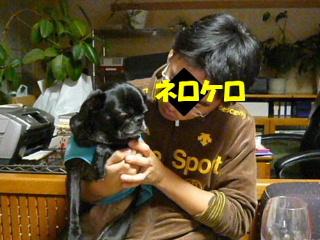2009_1122renk0040b.jpg