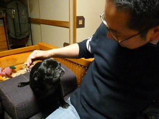 2010_0115hakama0011b.jpg