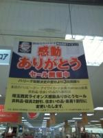 sale_lions