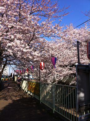 神田川12-04-07 2