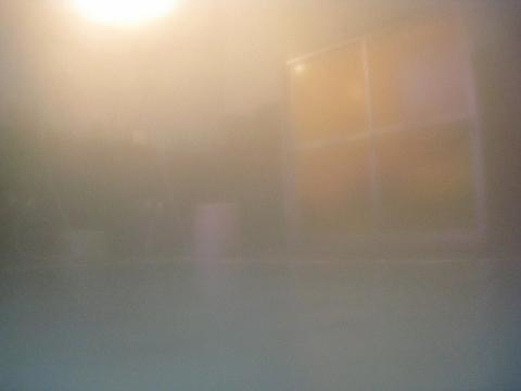 IMG_1316 (480x360)