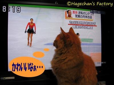 cats0104