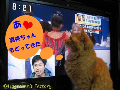 cats0107