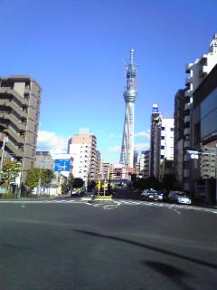 NEC_0380.jpg