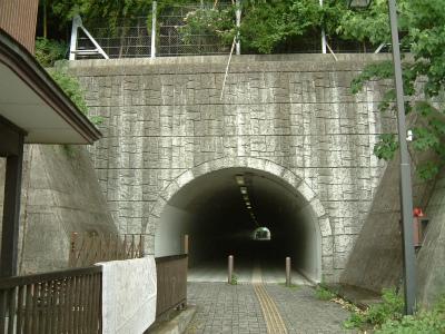 身延橋09