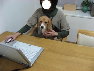 blog 044