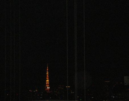 ベイブリッヂからの東京タワー