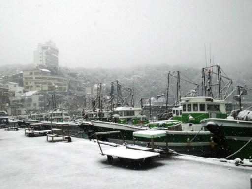 2011yuki4.jpg
