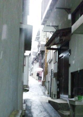2011yuki6.jpg