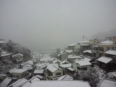 2011yuki7.jpg