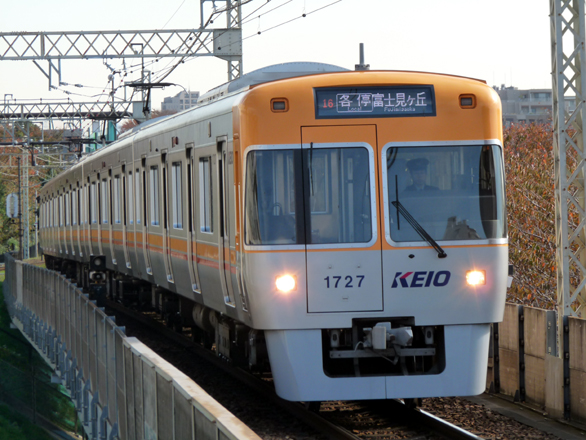 P1130742.jpg