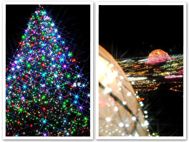 Winter Vista Illumination 2010