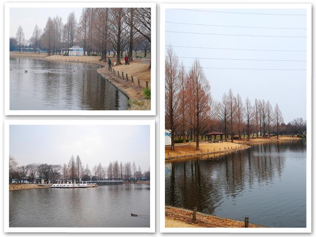 お散歩☆川越水上公園