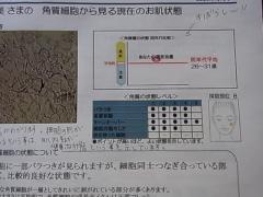 RIMG0719.jpg