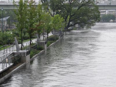 晴れ→豪雨の日8.jpg
