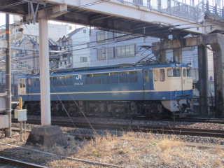 P1193737.jpg