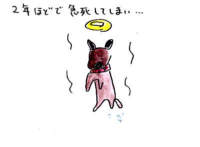 IMG_0002_20130309153250.jpg