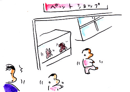 IMG_0003_20130308154301.jpg