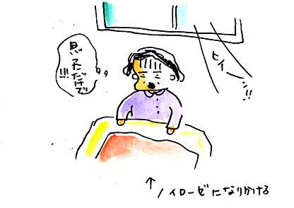 IMG_0005_20130309153251.jpg