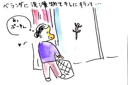 IMG_0009_20130309153317.jpg