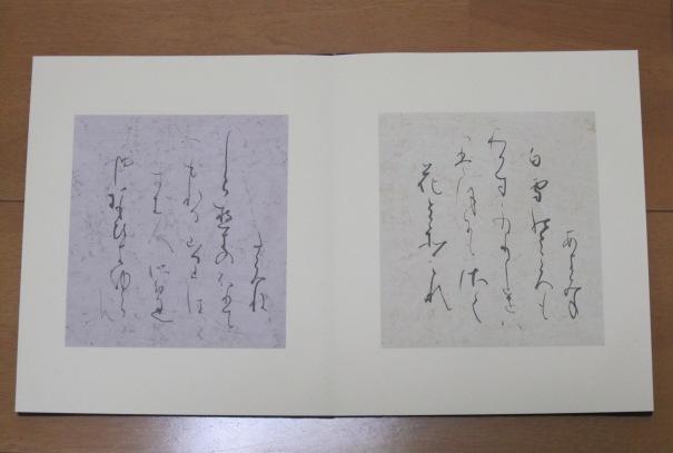 2011折帖2