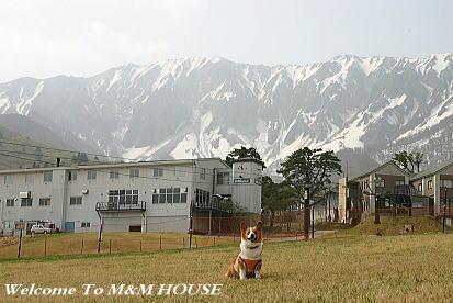 大山2011GW2